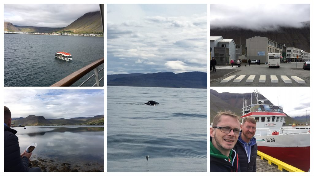 Exploring Isafjordur Iceland and Whale Watching